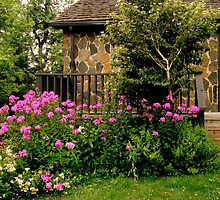 Garden Along the Fence ^ by ctheworld