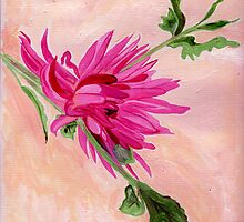 Hot Pink by Anne Gitto
