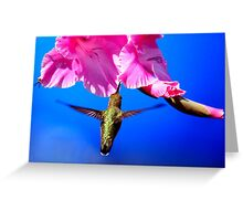 FLOWER NECTAR COLLECTER Greeting Card