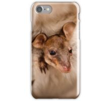 Little Wallaby Joey in mums pouch iPhone Case/Skin