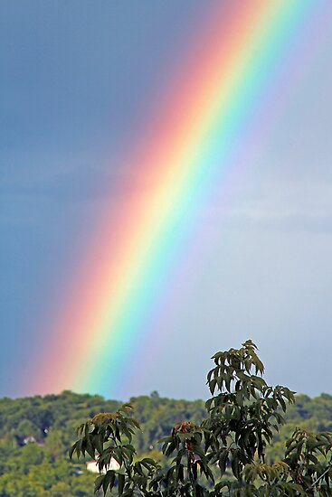 The Rainbow - Dunrobin Ontario by Debbie Pinard