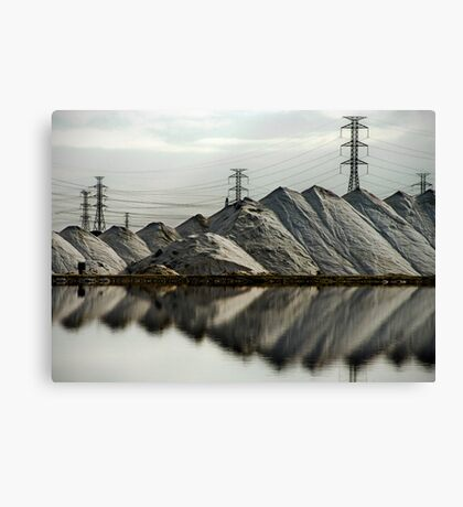 Visual Pollution Canvas Print