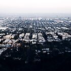 Runyon Canyon View by Tony Yu