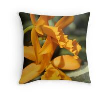 Lazy Day in the Soft Sunlight Throw Pillow
