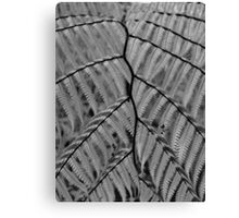Fern, the vessels of life, BW, yellow filter applied Canvas Print