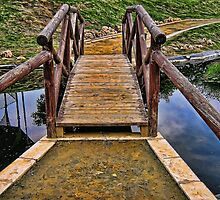 Wooden Bridge by Maria  Gonzalez