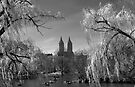 Spring in Central Park (BW) by Yelena Rozov