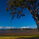 Afternoon at Victoria Point by Philip Alexander
