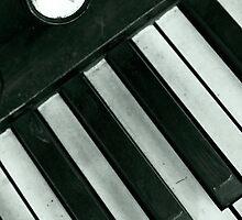 Piano Forte © by © Hany G. Jadaa © Prince John Photography