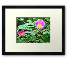 Forest Gems Framed Print