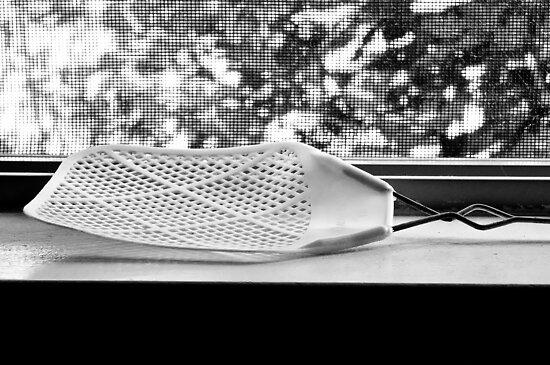 Fly Swatter by Jeffrey  Sinnock
