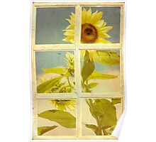 Vintage Botanical Sunshine Poster