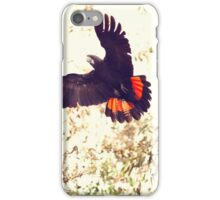 Red tail Black Cockatoo, Perth Western Australia iPhone Case/Skin