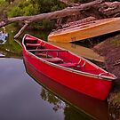 """Billabong Reflections"" by Phil Thomson IPA"
