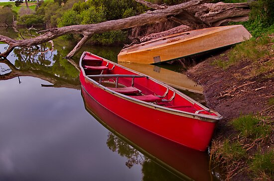 """""""Billabong Reflections"""" by Phil Thomson IPA"""