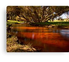 """""""Red Gully"""" Canvas Print"""