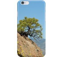 Shrub and Rock at Canon City  iPhone Case/Skin