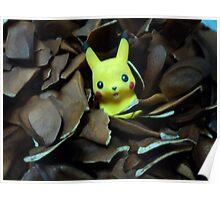 stuck among mahogany seeds Poster