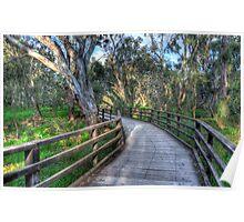 A walk in the bush Poster