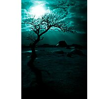 Midnight Sun Photographic Print