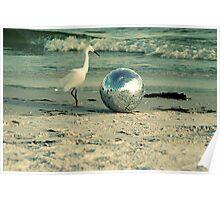 The Disco Ball Egret of South Lido Beach  Poster