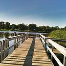 long walk off a short pier... by Cheryl Dunning