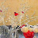 Christmas Cardinal by Douglas E.  Welch