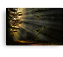 Road To His Glory Canvas Print