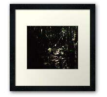 the elder forest Framed Print