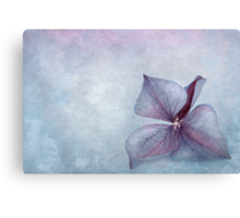 The Blue One Canvas Print