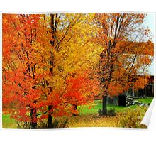 Autumn Trees By The Barn Poster
