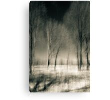 Kitty Todd Nature Preserve Early Summer Canvas Print