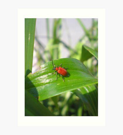 a bug's life Art Print