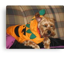 Biscuits Halloween Costume Canvas Print