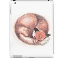 Fox Sleeping iPad Case/Skin