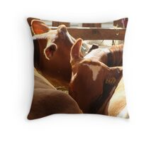 Don't udder a word of this to anyone!!! Throw Pillow