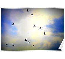 Birds Flying High  Poster