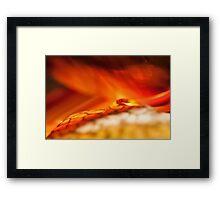 Reality of Firelight Framed Print