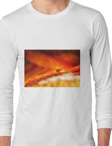 Reality of Firelight Long Sleeve T-Shirt