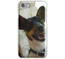 Mini Foxy / Jack Russel iPhone Case/Skin