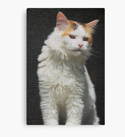 Screen Cat Canvas Print