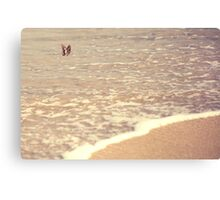 Butterfly on the beach, Coral bay, Western Australia Canvas Print