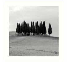 B&W Tuscan Trees Art Print