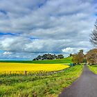 The Green & Gold... by Chris Kean
