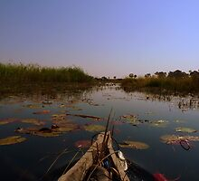 Serenity, a trip in a mokoro by LivWildlife