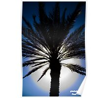 Palm Tree light Poster