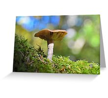Magical Mushroom Greeting Card