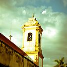 Top of Old Church  by petitejardim