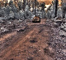 Jarrahwood forest track IR #2 by BigAndRed