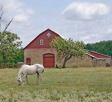 Stone Barn - Silverdale, Kansas by Kent Burton